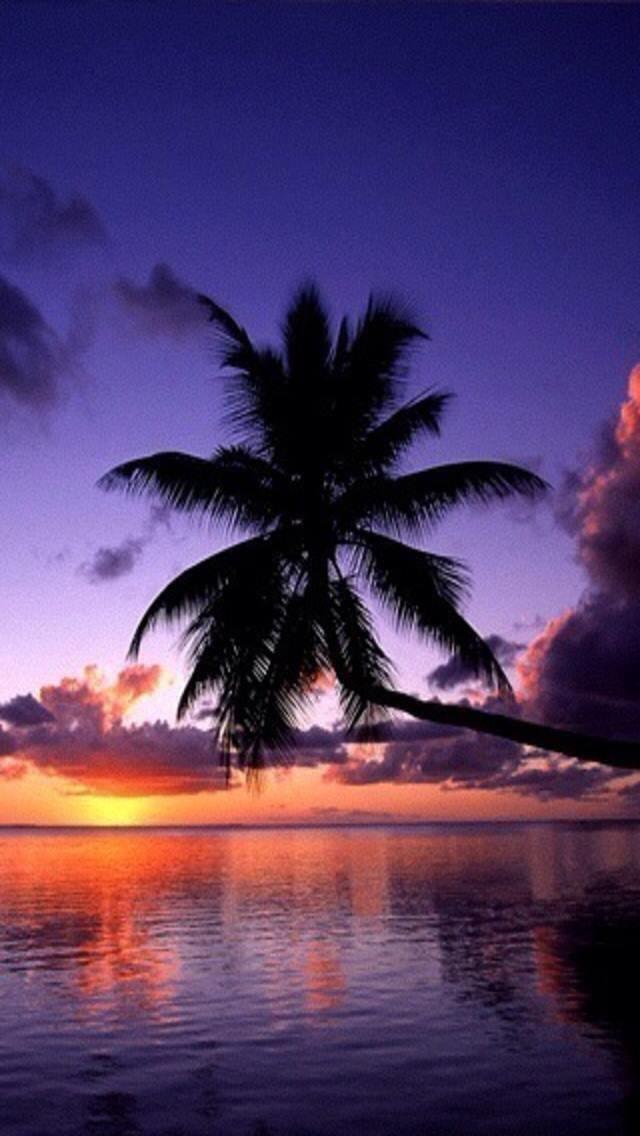 Jupiter Florida Online Guide Photo Contest